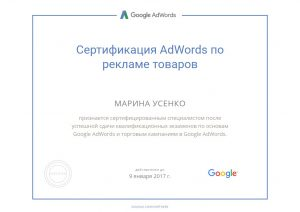 adwords-shop-usenko